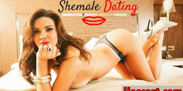 Are shemale escorts popular these days